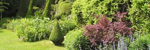 black perigord gardens