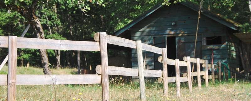 cabane au fond du jardin en periogrd